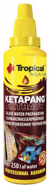 Tropical Schwarzwasseraufbereiter Ketapang Extrakt